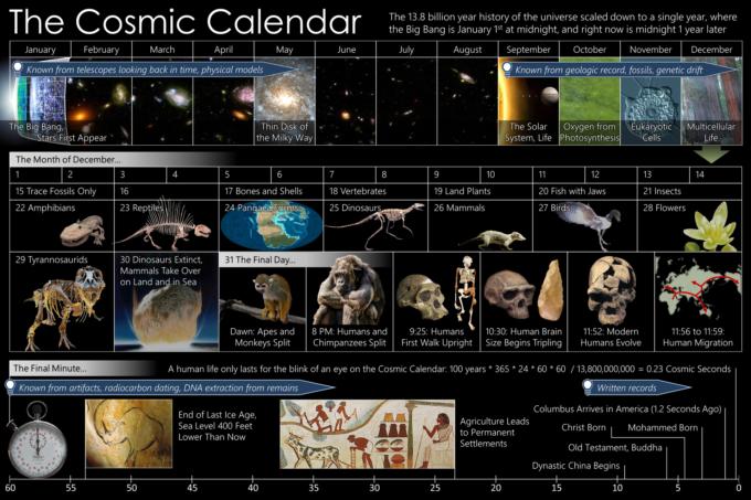 カロリーゼロ理論 カレンダー